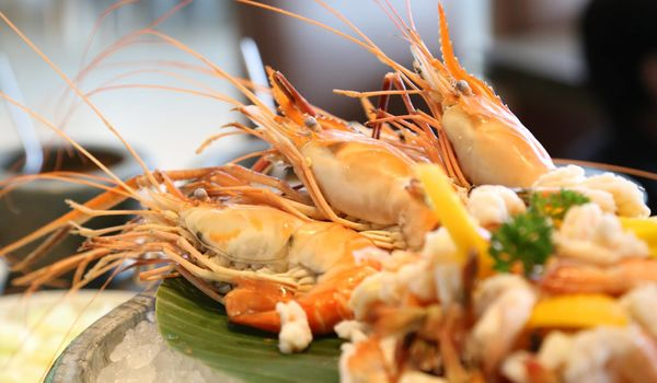 JW Kitchen-JW Marriott Kolkata-restaurant/652664/restaurant020180807051137.jpg