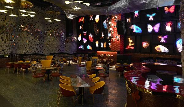 Dragonfly Experience-Worldmark 1-restaurant/663167/restaurant320210312091210.jpg