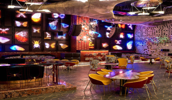 Dragonfly Experience-Worldmark 1-restaurant/663167/restaurant520191211094134.jpg
