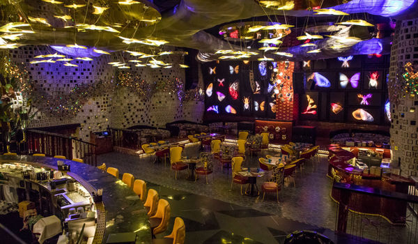 Dragonfly Experience-Worldmark 1-restaurant/663167/restaurant720210312091121.jpg