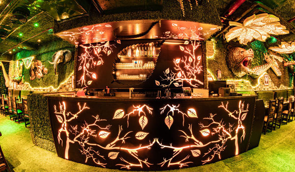 Jungle Jamboree-Ambience Mall, Gurgaon-restaurant/666283/restaurant920190727131412.jpg