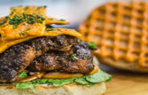 The Burger Brasserie | EazyDiner