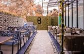 Bounce Lounge & Bar | EazyDiner