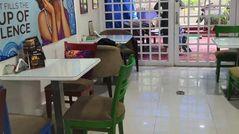 Cafe Urbana,Goregaon East, Western Suburbs
