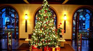 Christmas Tree Lighting Event at the Grand Hyatt Goa