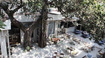 Olive Bar & Kitchen,Mehrauli, South Delhi