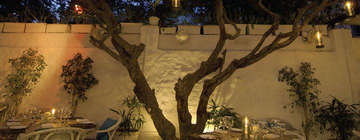 Olive Bar & Kitchen-Khar, Western Suburbs-5387_2-01.jpg