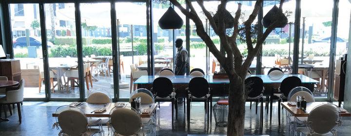 Saladicious Grillz-City Walk, Al Safa-restaurant020170411110118.jpg