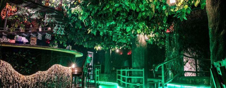 Rainforest Resto Bar-Hiranandani Estate, Thane Region-restaurant120180417120054.jpeg
