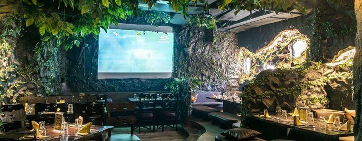 Rainforest Resto Bar-Hiranandani Estate, Thane Region-restaurant220180417120054.jpeg